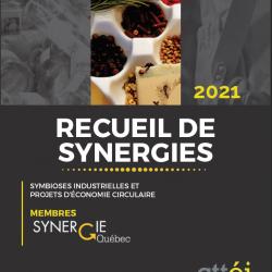 Recueil de synergies 2021