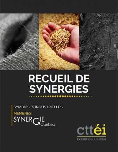 Le Recueil de synergies élaboré par Synergie Québec et le CTTÉI